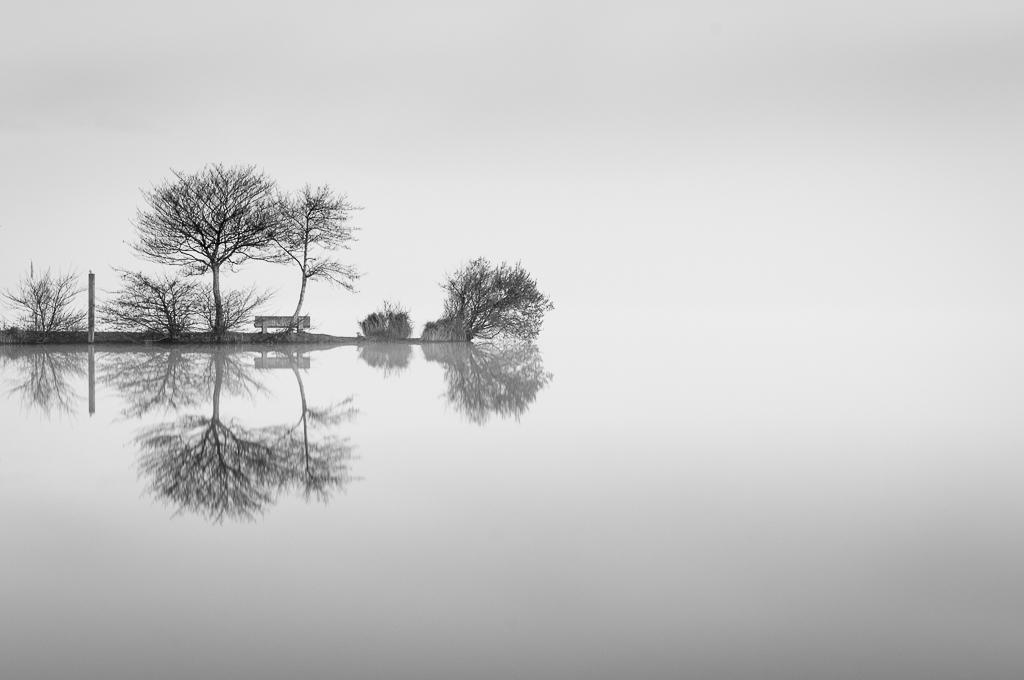 Lac de leon-- Paisaje en blanco y negro